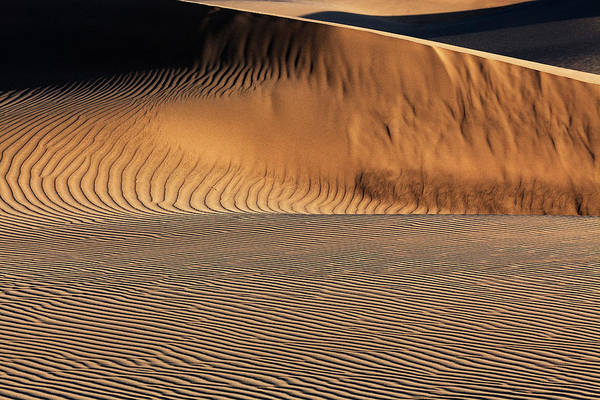 Wall Art - Photograph - Dune Landscape Dunes Of Maspalomas Dunas De Maspalomas Structures In The Sand Evening Light Nature by imageBROKER - Harry Laub