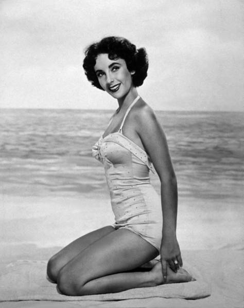 Sex Symbol Photograph - Elizabeth Taylor by Hulton Archive