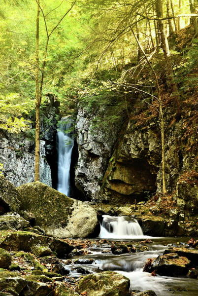 Photograph - Falls Of Song by Harry Moulton