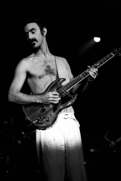 Frank Zappa Wall Art - Photograph - Frank Zappa Live by Larry Hulst