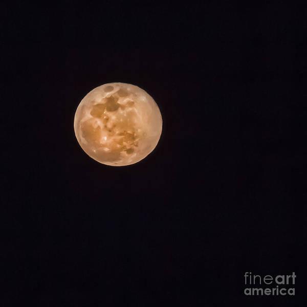 Wall Art - Photograph - Full Moon by Robert Bales