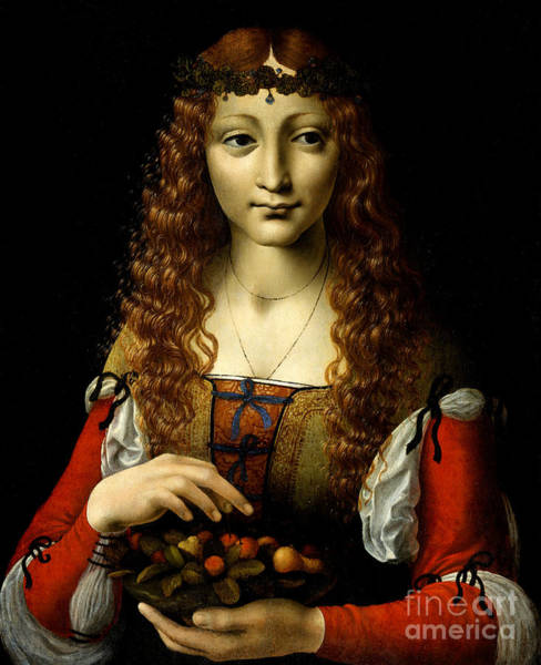 Wall Art - Painting - Girl With Cherries by Giovanni Ambrogio de Predis