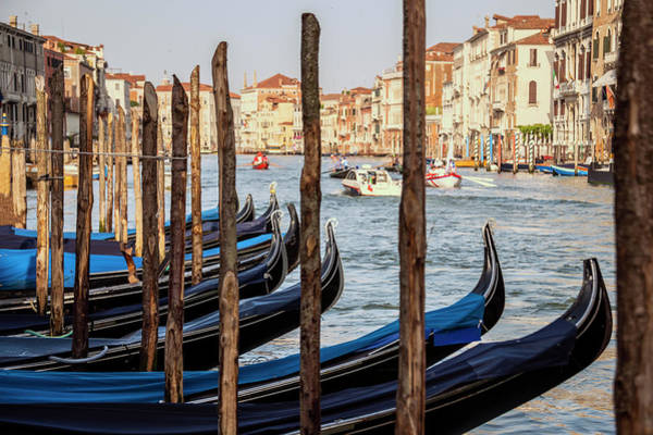 Wall Art - Photograph - Gondolas by Svetlana Sewell