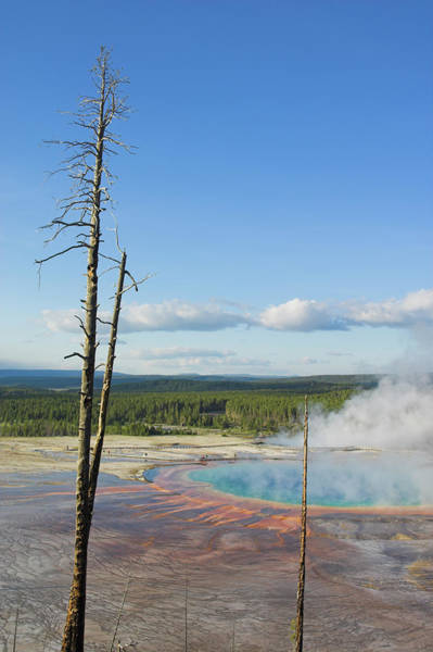 Wall Art - Photograph - Grand Prismatic Spring, Midway Geyser by Neale Clark / Robertharding
