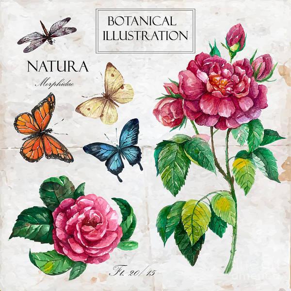 Botany Wall Art - Digital Art - Hand Drawn Botanical Illustration In by Yana Fefelova