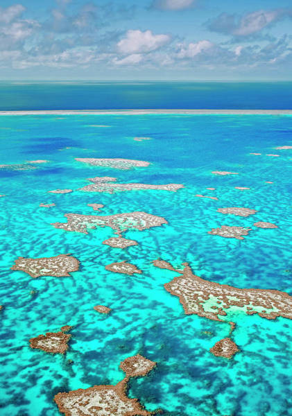 Reef Photograph - Hardy Reef In The Great Barrier Reef by Australian Scenics