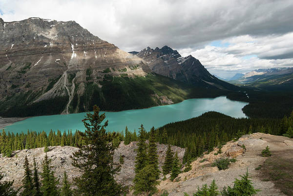 Peyto Lake Wall Art - Photograph - Icefields Parkway, Bow Pass, Peyto Lake by John Elk Iii