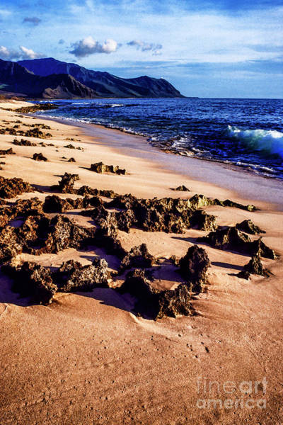 Photograph - Kaena Point State Park by Thomas R Fletcher