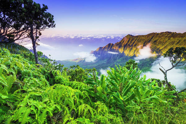 Waimea Canyon Photograph - Kalalau Valley And The Na Pali Coast by Russ Bishop