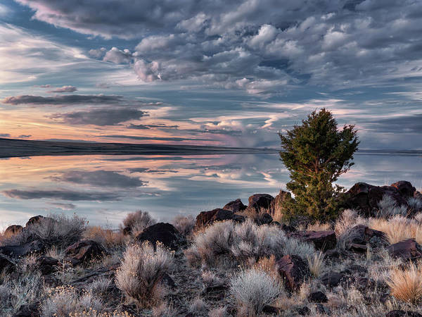 Photograph - Lake Abert 8 by Leland D Howard