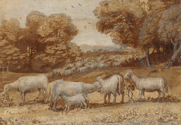 Drawing - Landscape With Sheep by Claude Lorrain