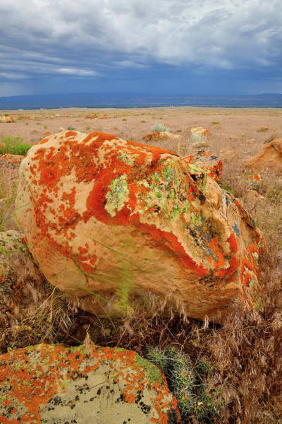 Photograph - Lichen Covered Boulders At Book Cliffs by Ray Mathis