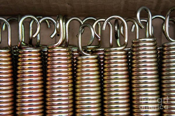 Wall Art - Photograph - Metal Springs  by Tom Gowanlock