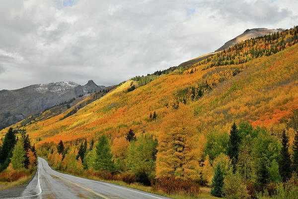 Photograph - Million Dollar Highway Fall Colors by Ray Mathis