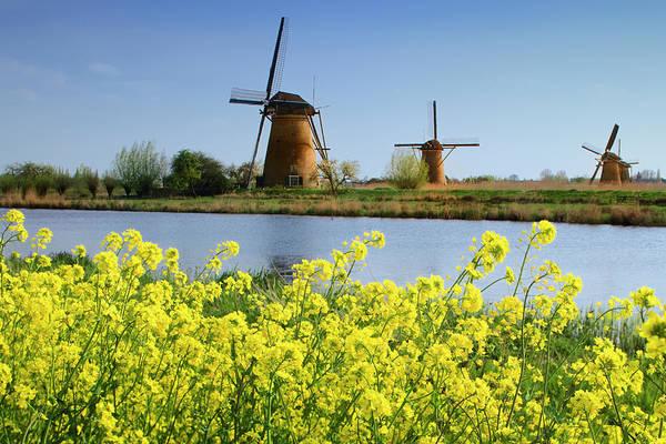 Wall Art - Photograph - Netherlands, Kinderdijk by Jaynes Gallery