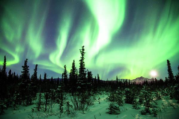 Wall Art - Photograph - Northern Lights by Daniel A. Leifheit