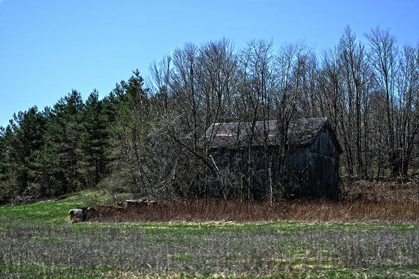 Photograph - Old Barn by Maggy Marsh