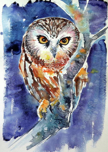 Wall Art - Painting - Owl At Night by Kovacs Anna Brigitta