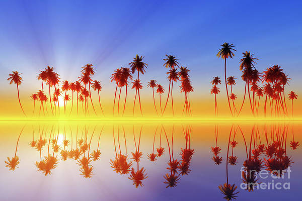 Wall Art - Photograph - Palms At Sunset by Aleksey Tugolukov