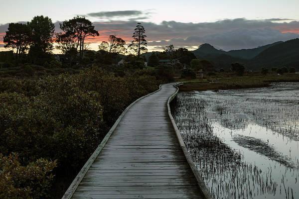 Wall Art - Photograph - Pauanui - New Zealand by Joana Kruse