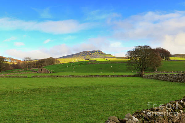 Wall Art - Photograph - Penyghent In Yorkshire Dales National Park North Yorkshire by Louise Heusinkveld