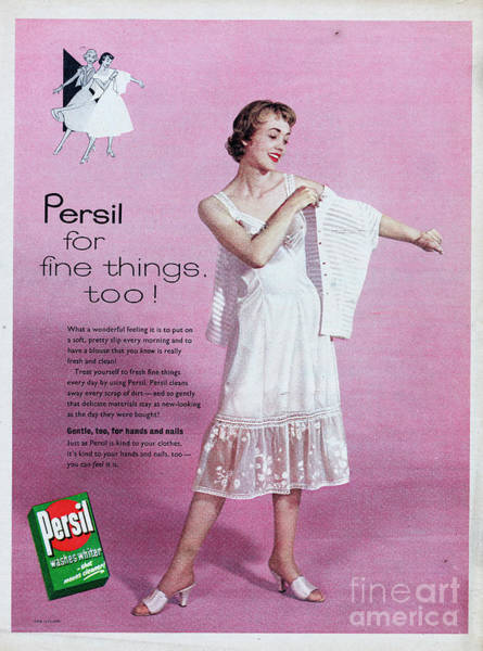 Wall Art - Photograph - Persil by Picture Post