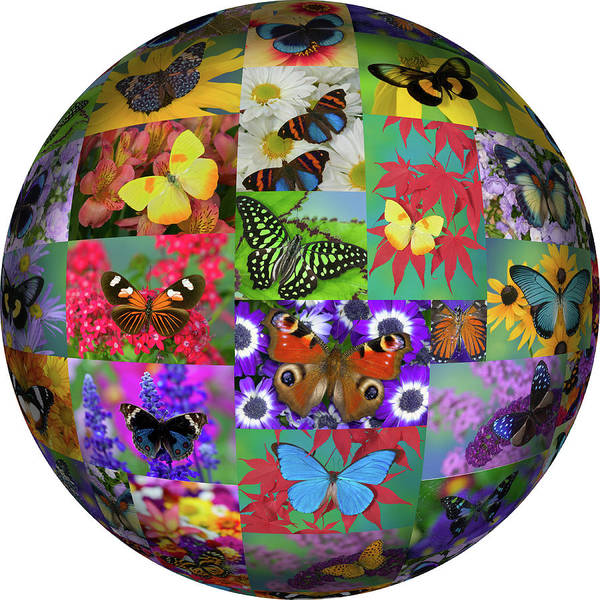 Wall Art - Photograph - Photoshop Designed Globe With Numerous by Darrell Gulin