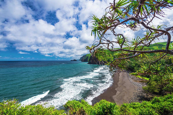 Wall Art - Photograph - Pololu Valley And Beach Through Hala by Russ Bishop