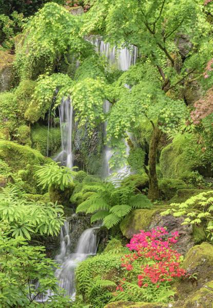 Wall Art - Photograph - Portland Japanese Garden, Oregon by William Sutton
