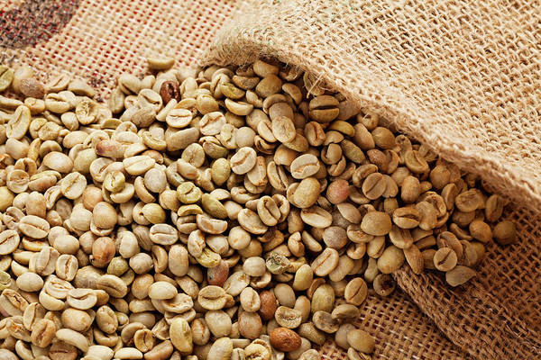 Merchandise Photograph - Raw Coffee Bean by Drbouz