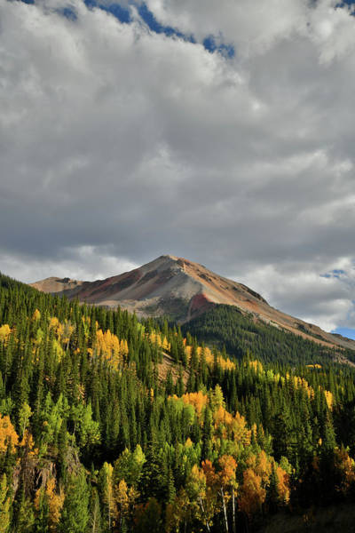 Photograph - Red Mountain Fall Colors by Ray Mathis