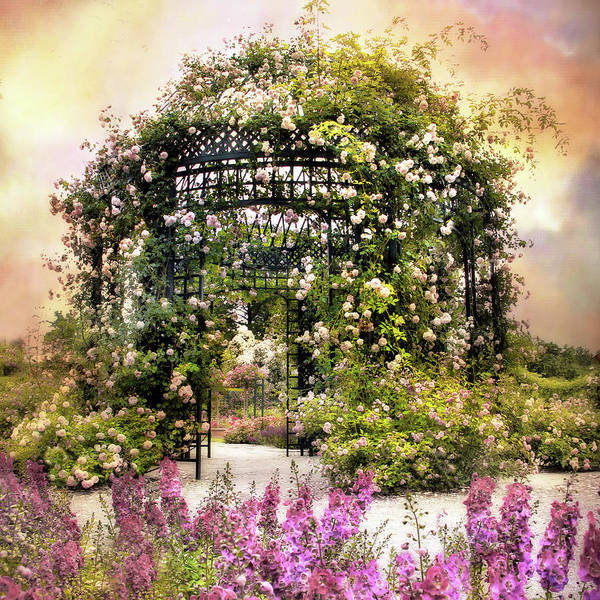 Wall Art - Photograph - Rose Garden Pergola by Jessica Jenney