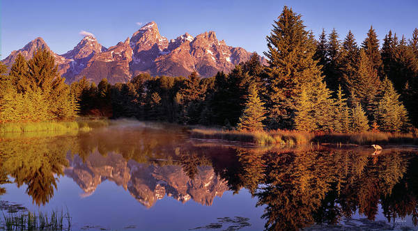 Photograph - Schwabacher Landing by Leland D Howard
