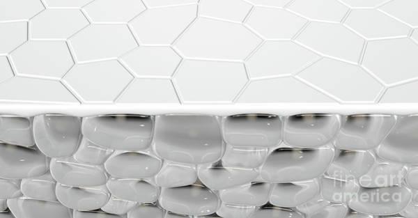 Wall Art - Digital Art - Skin Dermis Cross Section by Allan Swart