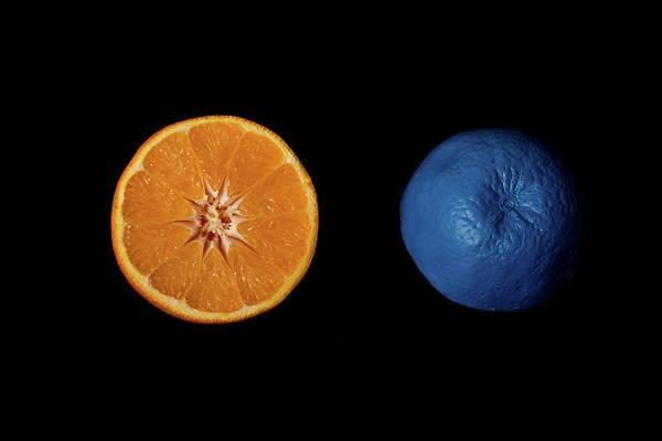 Wall Art - Photograph - Slices Of  Blue And Orange Fresh Citrus Orange Fruit by Michalakis Ppalis