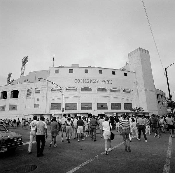 Wall Art - Photograph - Spectators In Front Of A Baseball by Panoramic Images