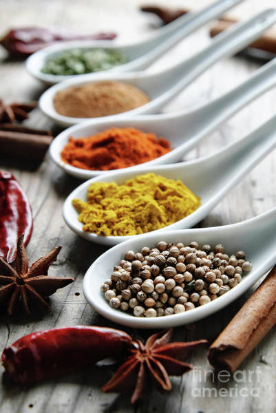 Wall Art - Photograph - Spices by Jelena Jovanovic