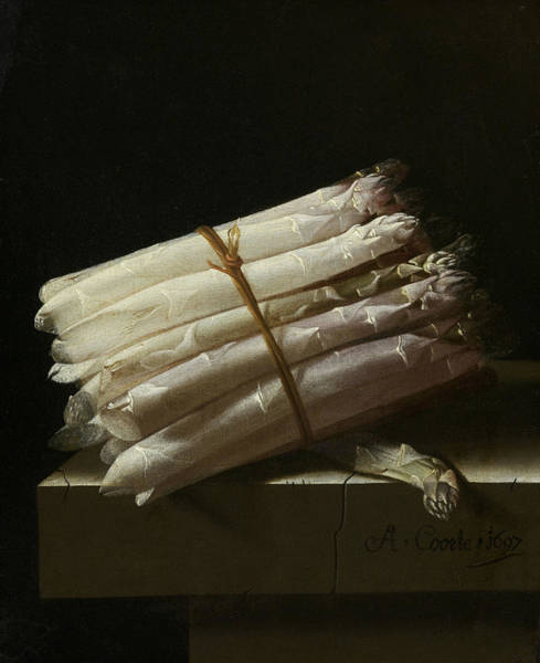 Painting - Still Life With Asparagus by Adriaen Coorte