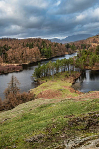 Wall Art - Photograph - Stunning Evening Landscape Image Of Tarn Hows In Uk Lake Distric by Matthew Gibson