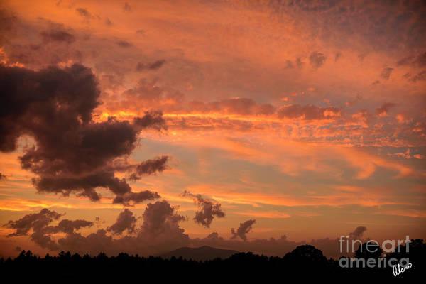 Photograph - Sunset by Alana Ranney