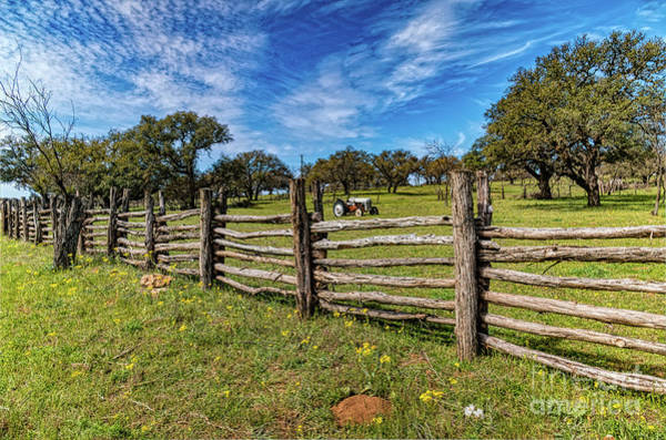 Texas Bluebonnet Digital Art - Texas Hill Country by Elijah Knight