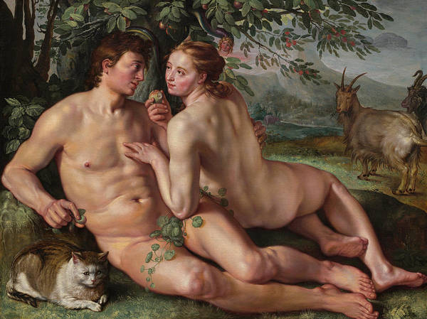 The Creation Of Adam Wall Art - Painting - The Fall Of Man by Hendrick Goltzius