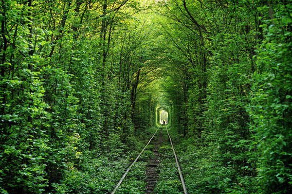 On The Move Photograph - The Tunnel Of Love In Western Ukraine by Amos Chapple
