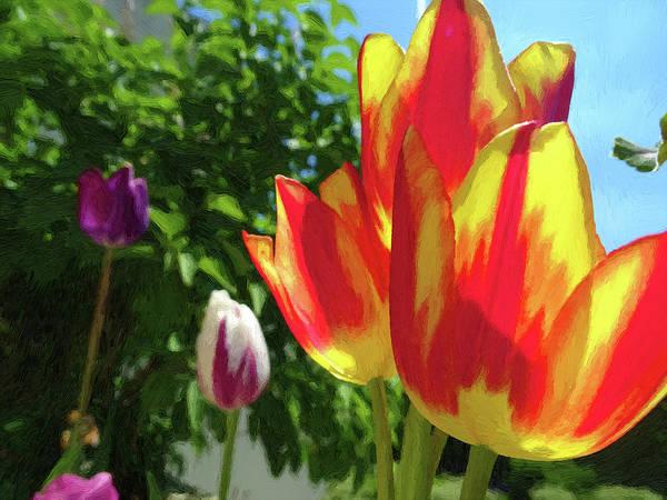 Wall Art - Digital Art - Tulips by Alex Lim