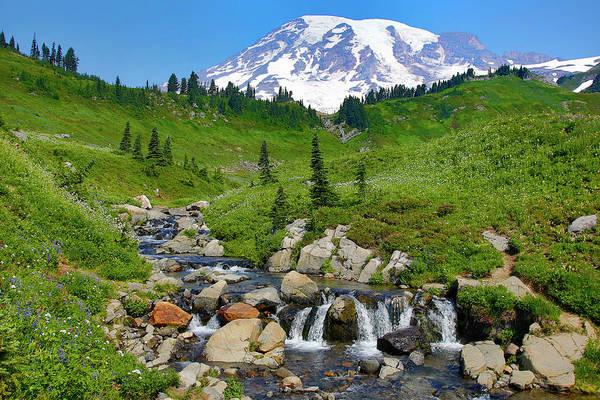 Wall Art - Photograph - Usa, Washington State, Mount Rainier by Jaynes Gallery