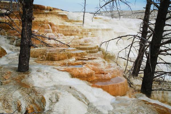 Wall Art - Photograph - Usa, Wyoming, Yellowstone National by Jeff Hunter