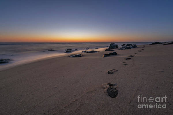 Wall Art - Photograph - Walk Along The Beach  by Michael Ver Sprill
