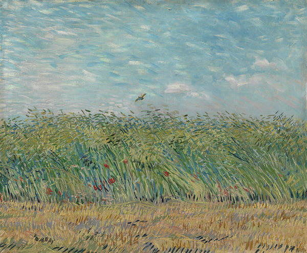 Poppie Painting - Wheatfield With Partridge by Vincent Van Gogh