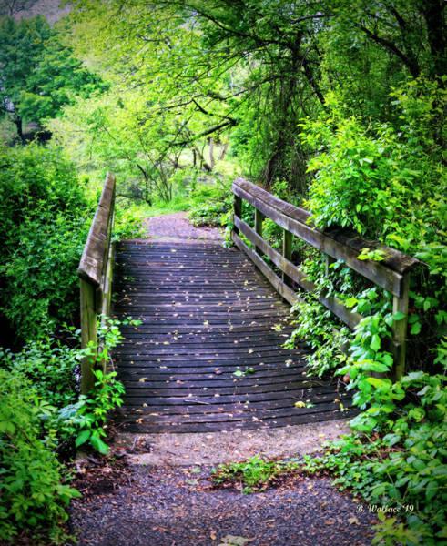 Wall Art - Photograph - Wooden Walk-bridge And Path by Brian Wallace