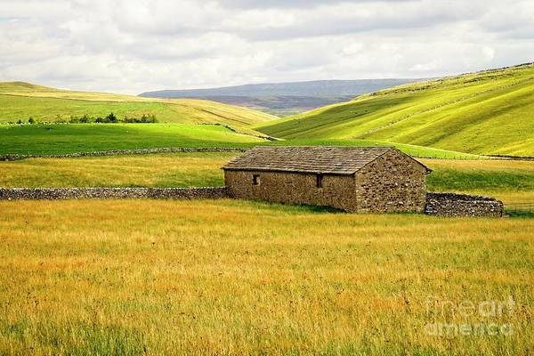 Photograph - Yorkshire Dales Landscape by Martyn Arnold